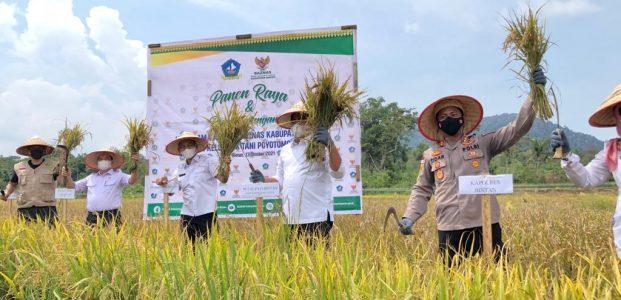 Kapolres Bintan Hadiri Launching Agrowisata Persawahan Dan Panen Padi