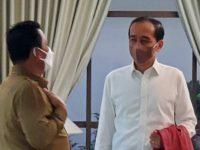 Gubernur Ansar Usulkan Kepada Presiden Bintan dan Karimun Seperti Batam